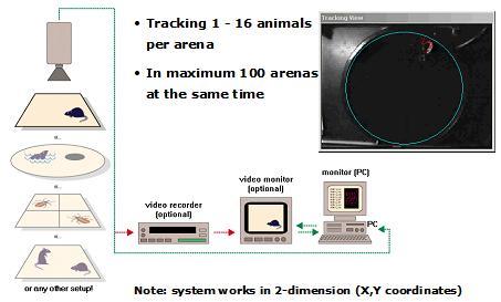 观察记录分析系统