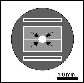 透射电镜校准标样
