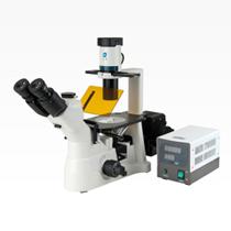 XD30系列倒置荧光显微镜