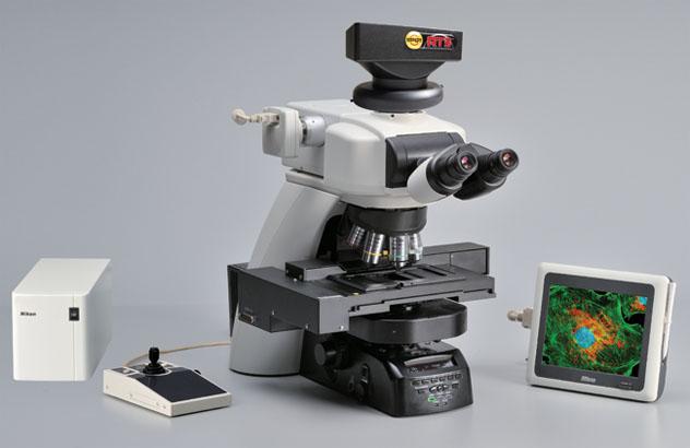 荧光信号太弱彩色相机拍不出好看的图片?灵敏的黑白相机又无法拍摄彩色的明场照片? 多用途显微成像系统,以高质量的Nikon显微镜配合独特的冷CCD相机,以经济的价格,高质量地完成这一切 *兼顾荧光应用 与 有色样品观察等明场应用 可在黑白模式与彩色模式间切换:调成黑白模式时,相机中无彩色滤光片,配合Nikon独到的高透射率lambda物镜,保证最少的光信号损失与最高的灵敏度;调成彩色模式时,超越普通彩色CCD四倍的颜色分辨率,保证最真实的色彩还原,复眼透镜(fly-eye lens)更使得明场照明在任何放大