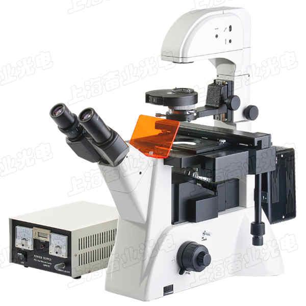 科研级倒置荧光显微镜B、G、V、UV荧光激发