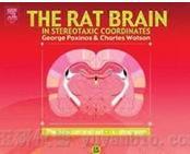 大鼠脑图谱 / The Rat Brain---脑图谱