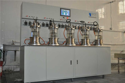 中国生物器材网--五联离位灭菌磁力搅拌玻璃发酵罐
