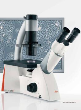 德国徕卡 倒置显微镜 DMi8  荧光显微镜