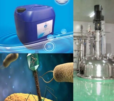 仪器交易网_发酵大肠杆菌感染噬菌体分析及处理方法--性能参数,报价/价格 ...