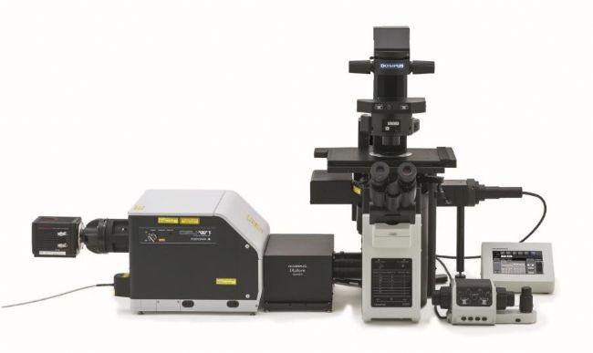 全新转盘式共聚焦超分辨显微镜SpinSR10