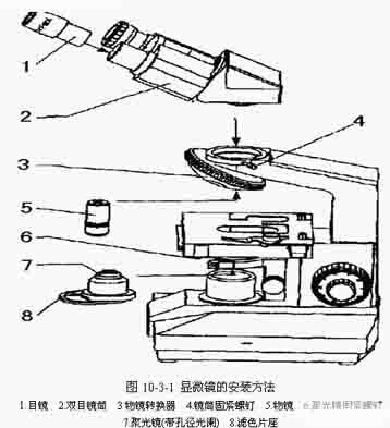 中国生物器材网—生物显微镜的使用与保养