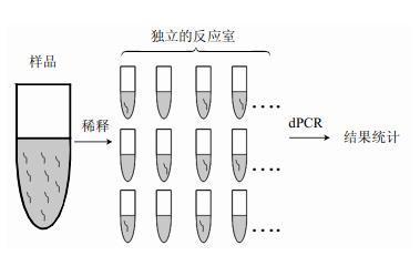 中国生物器材网—基于数字pcr的单分子dna定量技术