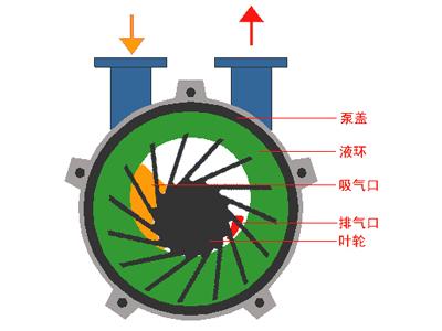 真空泵的工作原理及作用