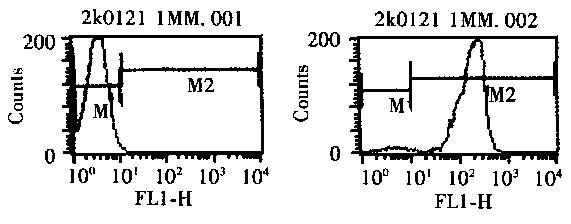 电路 电路图 电子 原理图 571_224