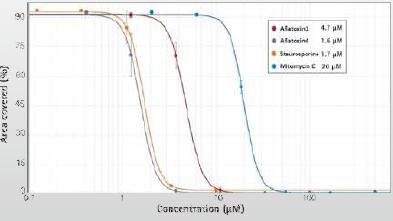 细胞毒性实验介绍