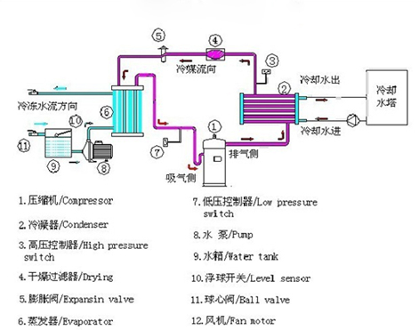 循环压缩机结构图