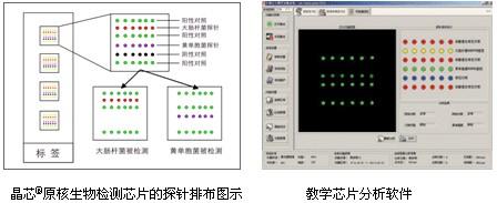 中国生物器材网--晶芯原核生物检测芯片--性能参数