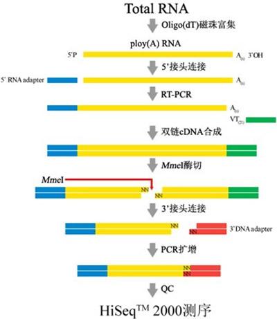 中国生物器材网--转录组测序