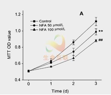 cck8细胞增殖检测
